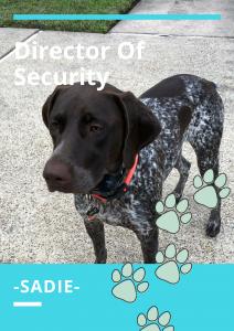 Sadie Director of security